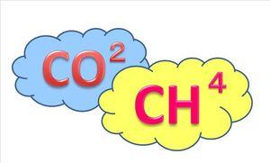 CO2.CH4.jpg